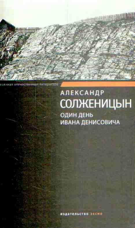 Скачать книгу один день ивана денисовича fb2